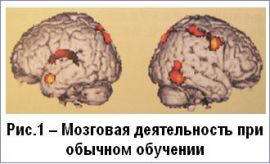 Мозговая деятельность при обычном обучении